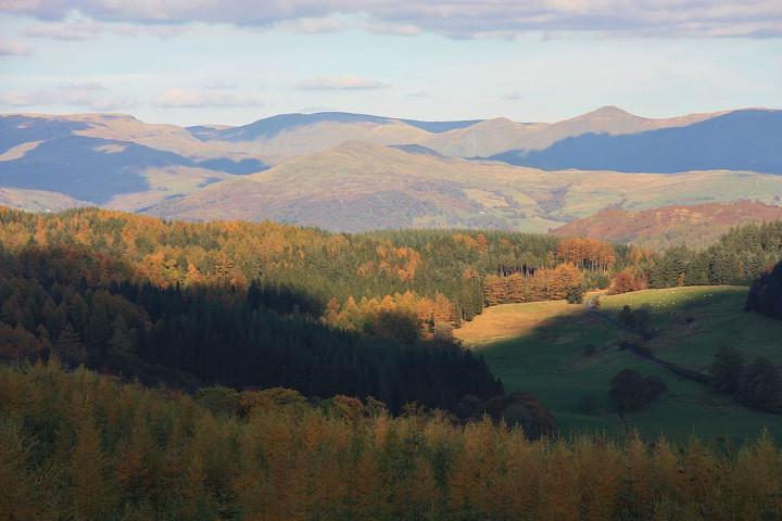 Autumn-landscape-grizedale-forest