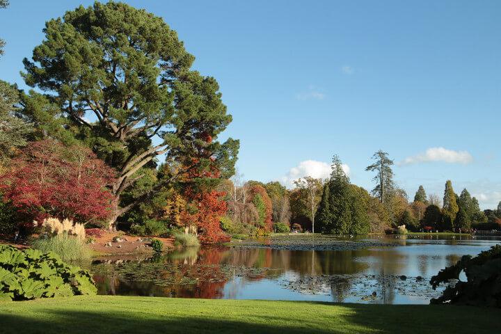 sheffield-park-garden